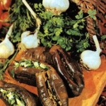 Baklazhanyi kvashenyie s chesnokom i zelenyu 150x150 Баклажаны квашенные с чесноком и зеленью
