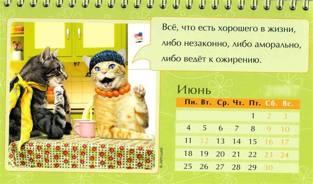 Iyun kazhdogo goda Праздничный календарь на каждый год (шуточный)