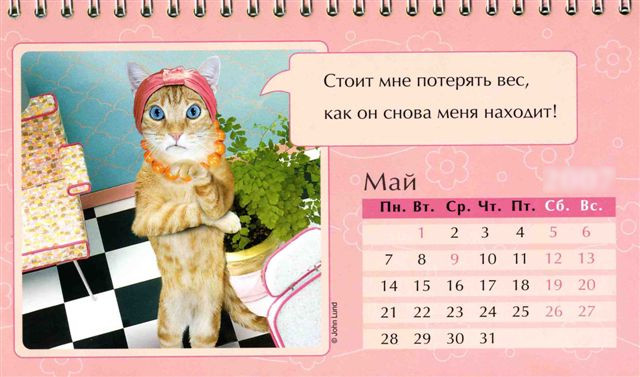 May kazhdogo goda Праздничный календарь на каждый год (шуточный)