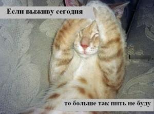 Neskolko sovetov ot pohmelya 300x222 Несколько советов от похмелья