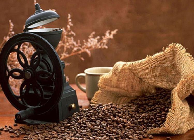 Kofe zerna bodrosti Для чего в доме нужна кофемолка