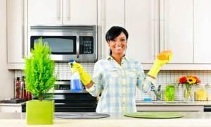 CHistota na kuhne ideal hozyayki Как ухаживать за холодильником