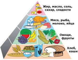 Osnovyi zdorovogo pitaniya Здоровое питание   что это