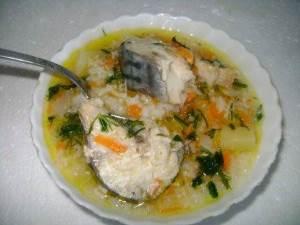 Sup iz svezhey skumbrii s risom v obyichnoy multivarke Салат с чечевицей, семгой, рисом и свежими овощами