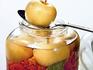 Mochenyie fruktyi ovoshhi i yagodyi Моченые фрукты, овощи и ягоды