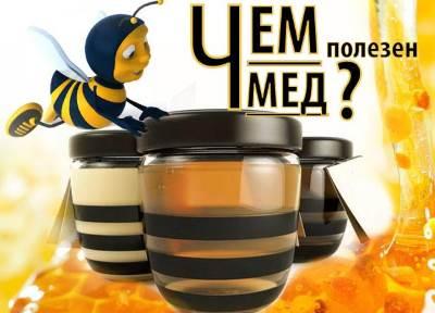 Polza meda Польза меда