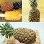 Kak vyibrat vkusnyiy ananas 150x150 Как надо выбирать помело