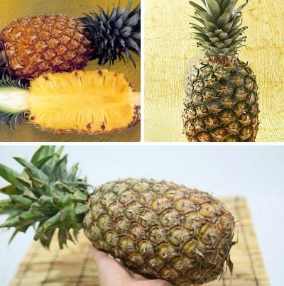 Kak vyibrat vkusnyiy ananas Как выбрать самый вкусный ананас